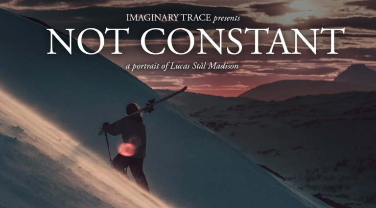 NOT CONSTANT // …starring Lucas Stål Madison