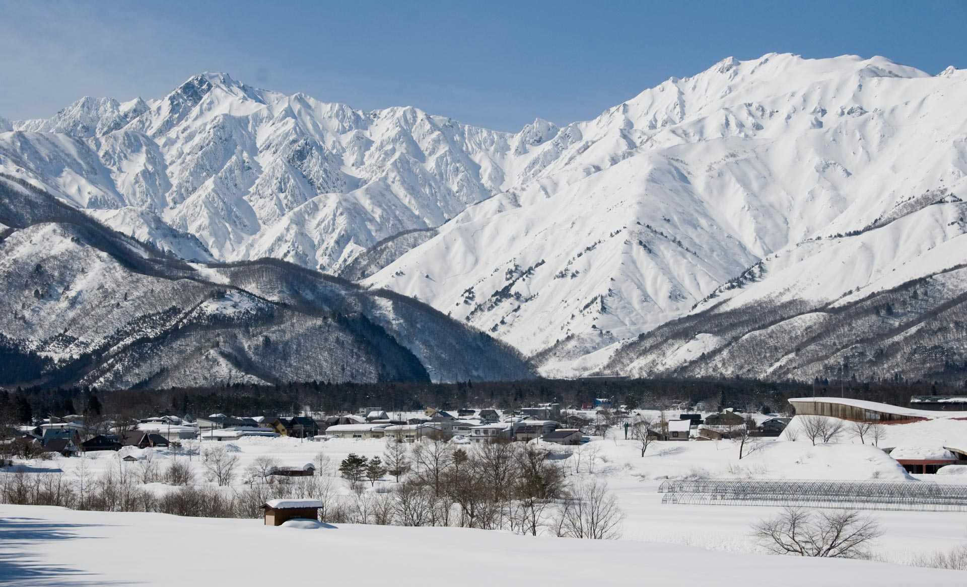 Preview: Das erste FWQ-Event in Hakuba (Japan) - Foto: Sarah Mulholland / freerideworldtour.com