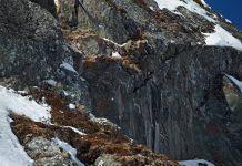 Bereits seit 2004 findet der X Over Rider statt und lockt mittlerweile bis zu 70 Fahrer aus 10 Nationen an das Kitzsteinhorn - Foto: TRettenwander