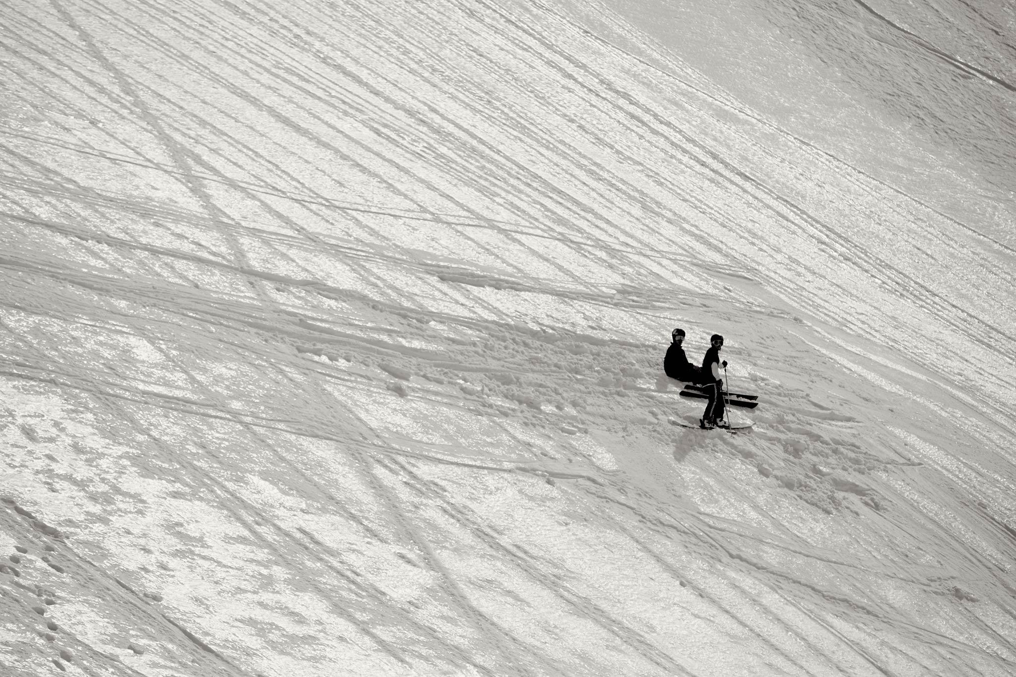 Die Profi Faulenzer bei der Arbeit: Ole & Lörki - Foto: Marco Freudenreich